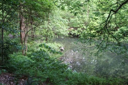 Ambergill Pool