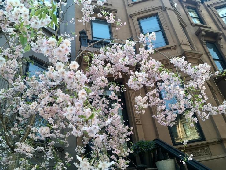 Photo May 01, 1 10 38 PM